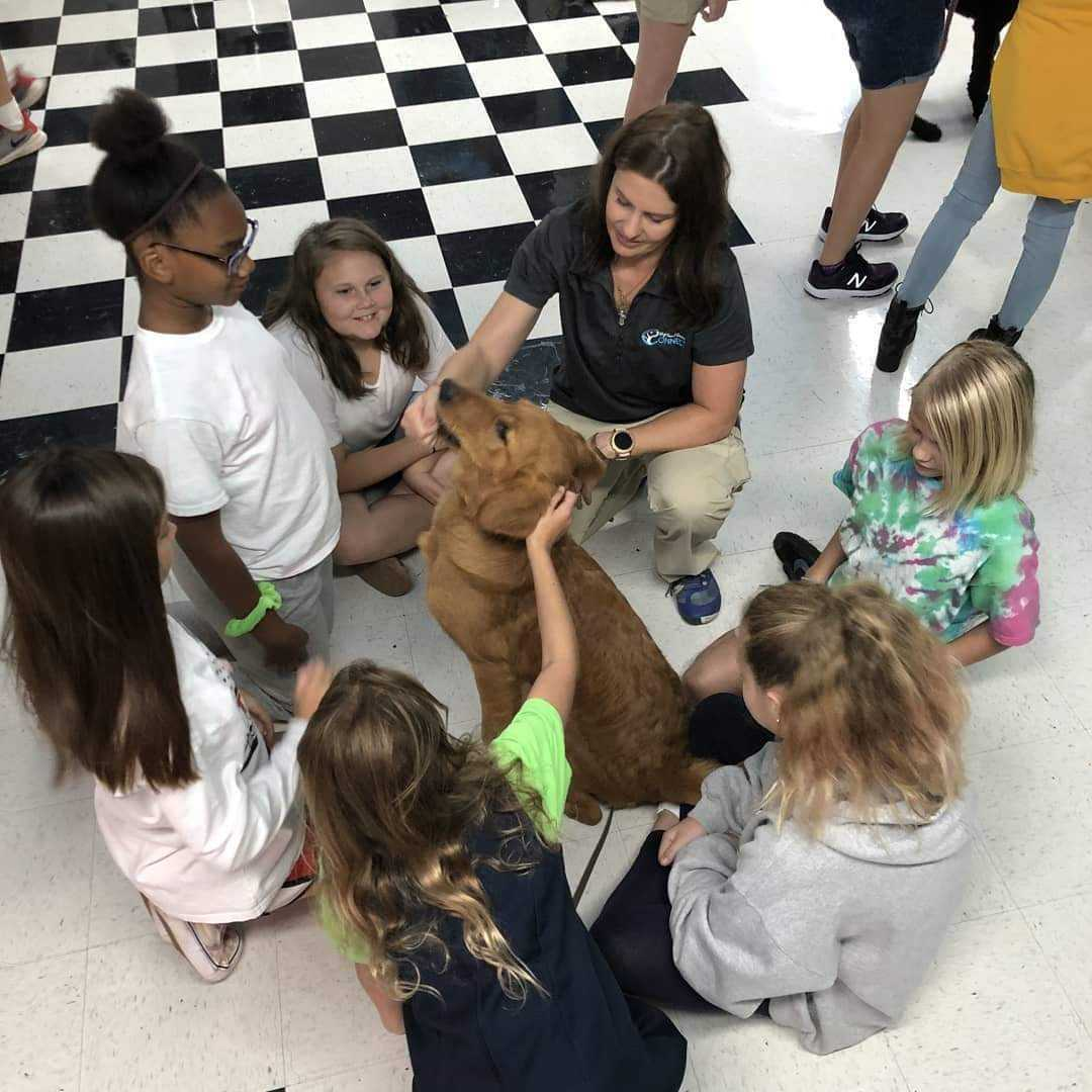 reading program and service dog in training